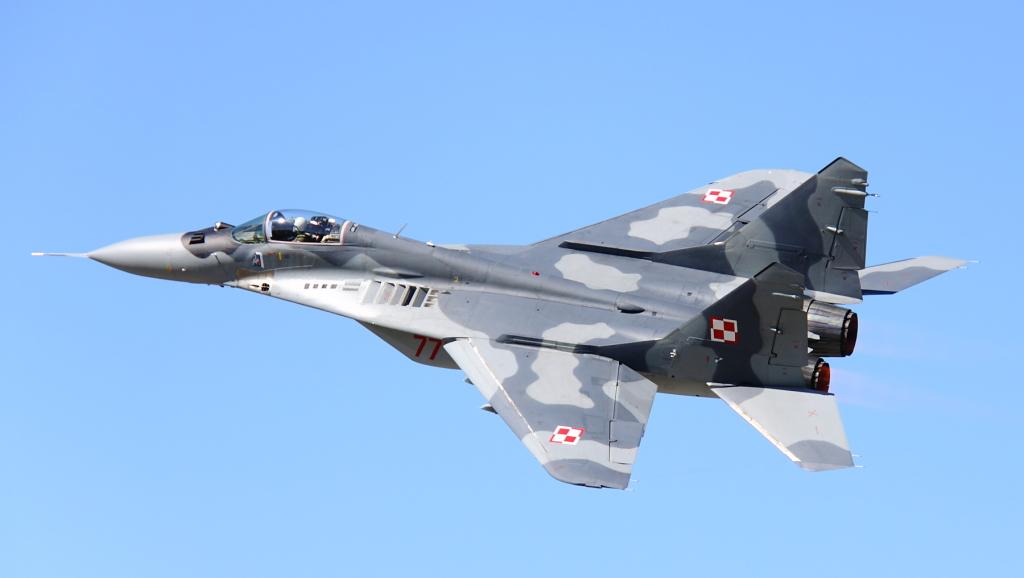 """Dla malborskich MiG-ów-29 wizyta maszyn z Taktisches Luftwaffengeschwader 73 miała wymiar sentymentalny. W tej właśnie jednostce służyły """"Szafy"""" stacjonujące dziś w 22. Bazie, zanim Niemcy w 2004 roku przekazały je polskiemu lotnictwu. MiG-i-29 rozpoczęły służbę w (ówczesnej) 41. Eskadrze Lotnictwa Taktycznego 7 czerwca 2005 roku."""