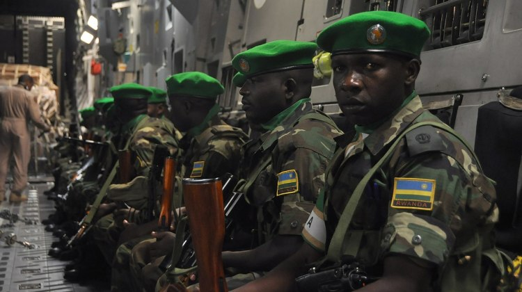 Central_African_Republic_support_140116-A-ZZ999-208