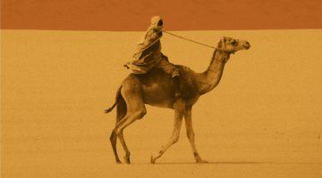 Daoud Hari – Tłumacz z Darfuru