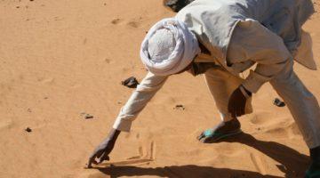 Konflikt w Tigraju może przerodzić się w wojnę etiopsko-sudańską